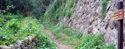 El Camí des Correu