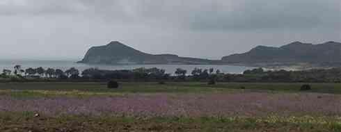 Playa de los Genoveses - Cabo de Gata