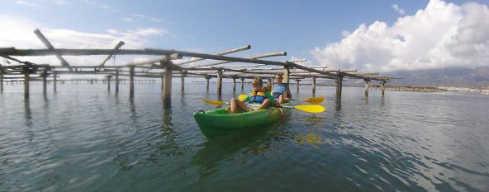 Recorriendo el delta en Kayak