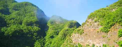 Reserva de la Biosfera de Los Tilos