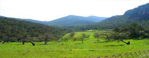 Beseit - Refugio Font Ferrera