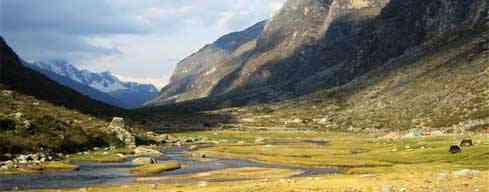 Cachapampa - Llama Corral