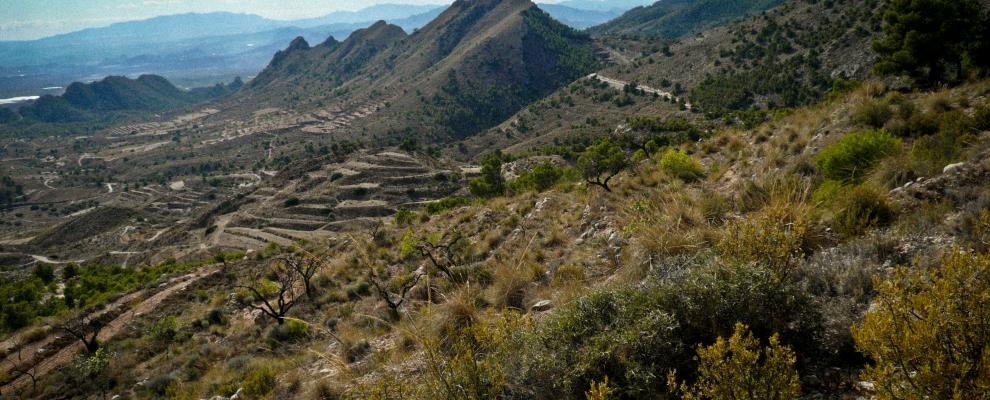 Ruta por Vall de Laguar