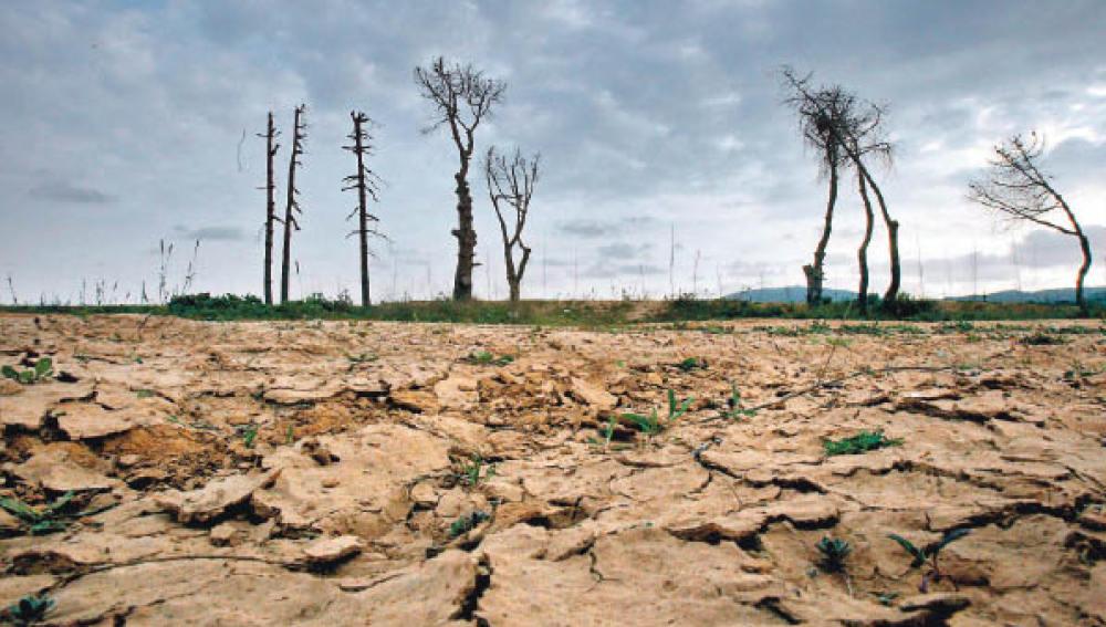 Las zonas áridas absorben el CO2