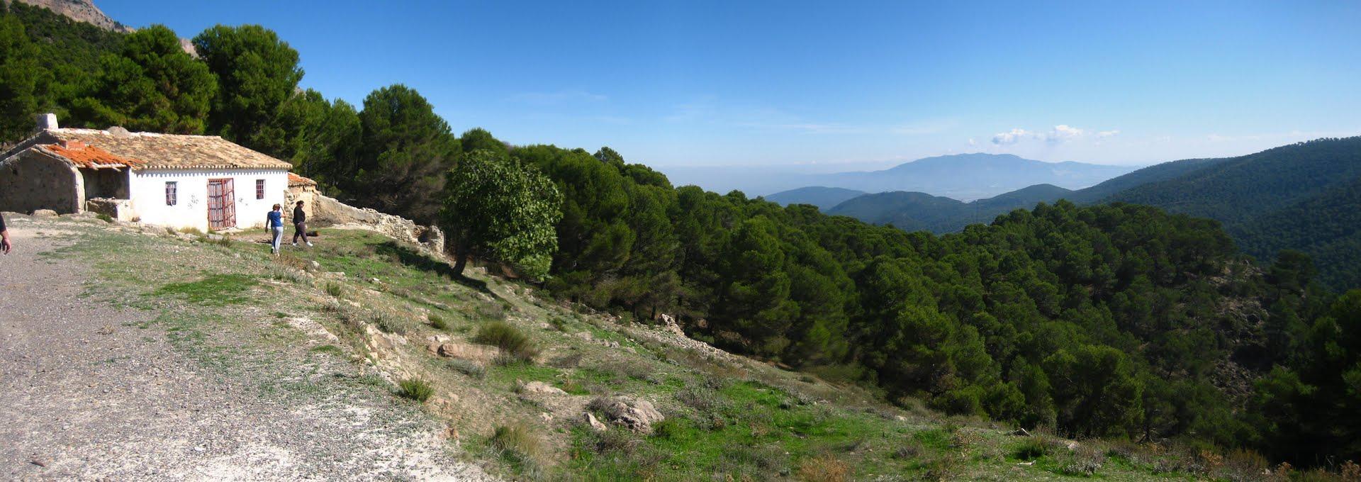 Berro en Sierra Espuña
