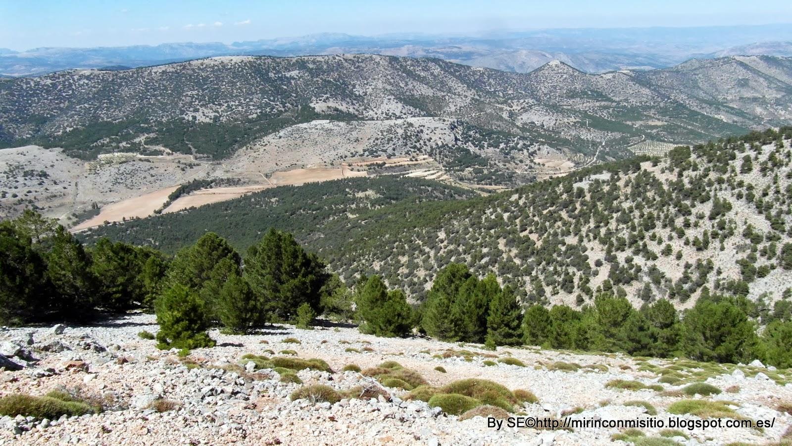 Cerro Revolcadores