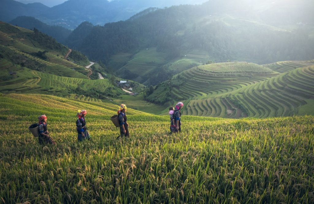 Los 5 mejores viajes para los amantes de la montaña y la naturaleza