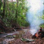 Técnicas de supervivencia en el bosque